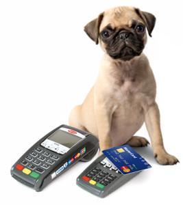 pet store merchant account terminal